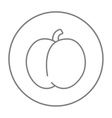 Plum with leaf line icon vector image