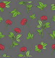 seamless pattern with ginseng plant vector image vector image