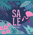 summer sale poster with tropic leaves flowers vector image vector image