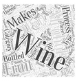The Process Of Manufacturing Wine Word Cloud vector image vector image