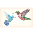 Two hummingbirds in stylized vector image