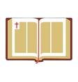 Open Bible Flat vector image