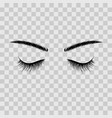 black eyebrows and eyelashes eyes closed vector image