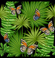 butterflies and leaves palm trees vector image
