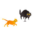 cartoon cat animals set isolated vector image