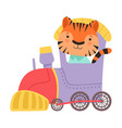 funny striped tiger riding on train vector image vector image