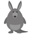 gray kangaroo with happy face vector image vector image
