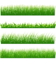 Green grass borders vector image vector image