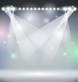 Stage Background vector image vector image