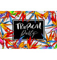 tropical for party invitation design vector image vector image