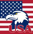 flag of the usa and eagle vector image