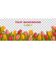background with tulips and leaves different vector image vector image
