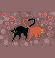 cats in love cuddled tails heart shape vector image