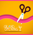 grand opening party card vector image vector image