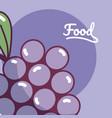 grapes natural fruit vector image vector image