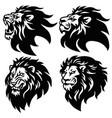 lion logo set premium mascot design collection vector image vector image