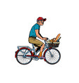 old man on bike with shopping food vector image