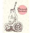 Drawn homemade lemonade sketch vector image vector image