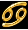 Gold zodiac sign Cancer on black background vector image