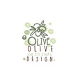 image of some olives hand drawn with leaves vector image