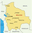 Plurinational State of Bolivia - map vector image vector image