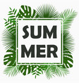 summer card design with - tropical palm leaves vector image