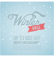 winter sale banner special isolated image winter vector image
