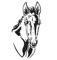 decorative horse 7 vector image