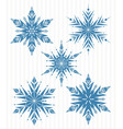 Five blue snowflakes vector image