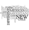 what is new mexico cuisine text word cloud concept vector image vector image