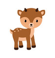 adorable little deer in flat vector image vector image