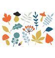 autumn colorful leaves set isolated on white vector image vector image