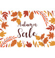 autumn frame with leaves on a white background vector image