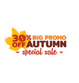 autumn special sale badge simple typography with vector image vector image
