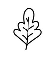 autumnal leaf foliage nature icon thick line vector image vector image