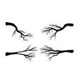 bare branch set symbol icon design beautiful vector image vector image