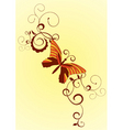 decorative vector orange butterfly vector image