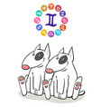 gemini zodiac sign with cartoon dog vector image vector image