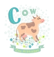 letter c - cow vector image vector image