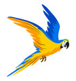macaw parrot tropical exotic bird vector image