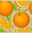 orange fruit pattern on color background vector image