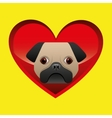 pug dog puppy face icon design vector image vector image