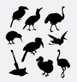 bird poultry silhouette vector image vector image