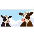 Cows with clouds vector image vector image