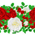 floral border seamless background roses vector image vector image