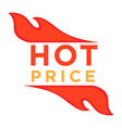 hot price logo design with burning fire element vector image