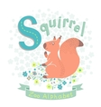 Letter S - Squirrel vector image