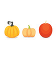 set cartoon pumpkin isolated autumn vector image