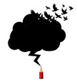 birds black cloud and lightning drawing red vector image vector image