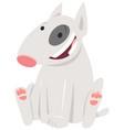 bull terrier dog cartoon character vector image vector image